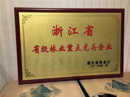 浙江省省级林业重点龙头企业